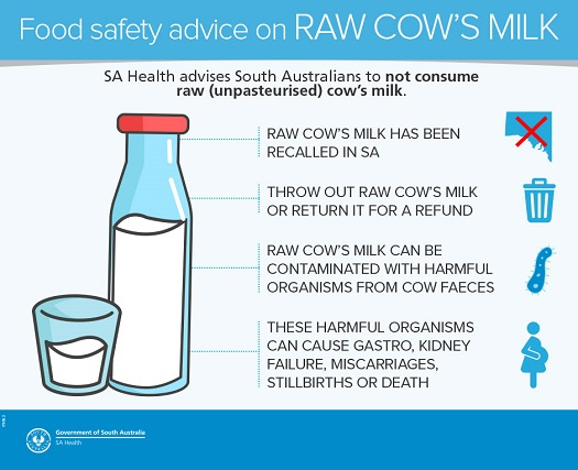 Inforgraphic describing the risks of raw cow's milk consumption